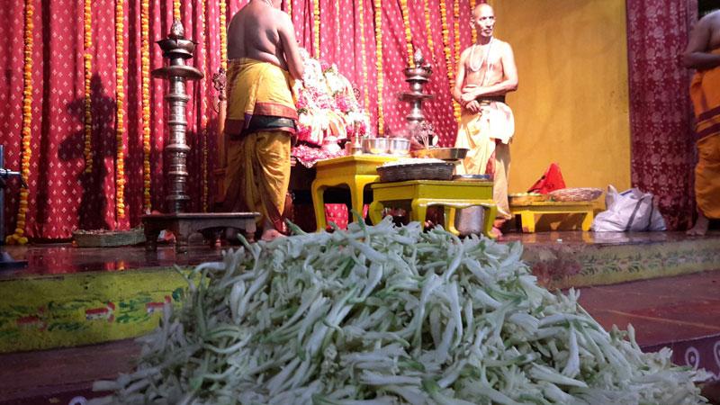 bhakta ramadasu